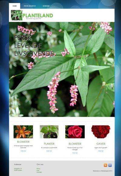 Bedrift hjemmeside - Enkel